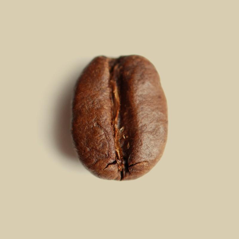Café en grain Bio