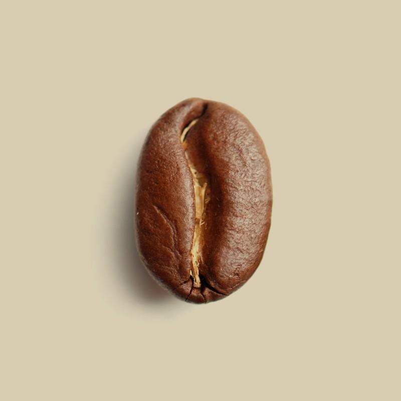 Café en grain Planteur