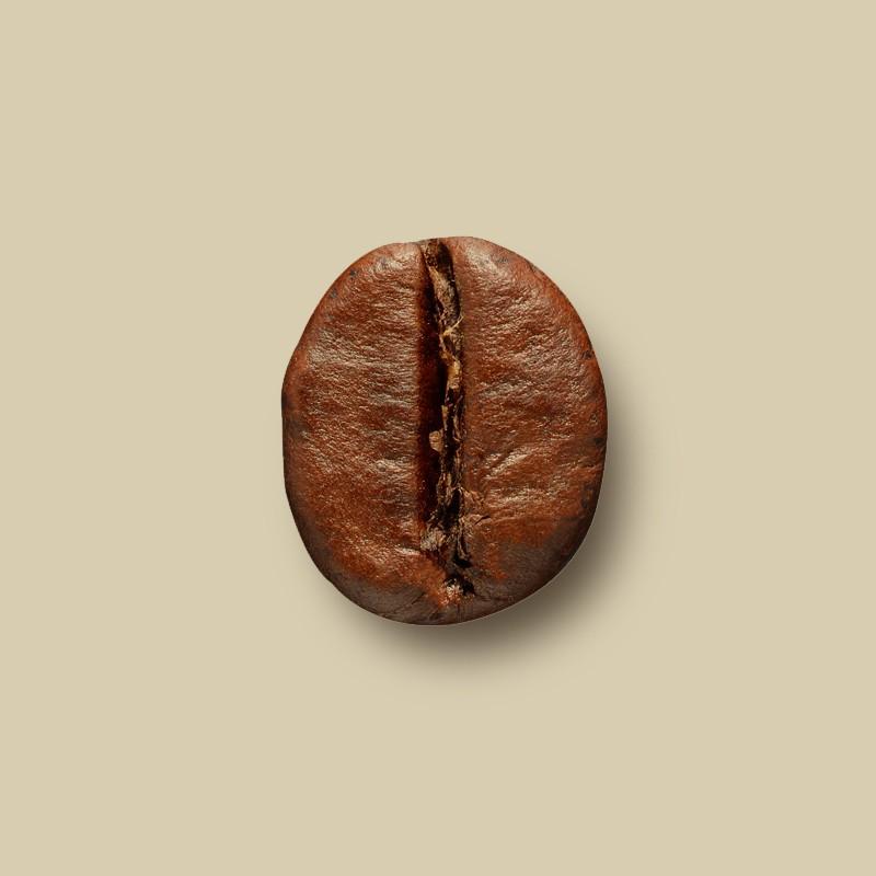 Café en grain Brésil