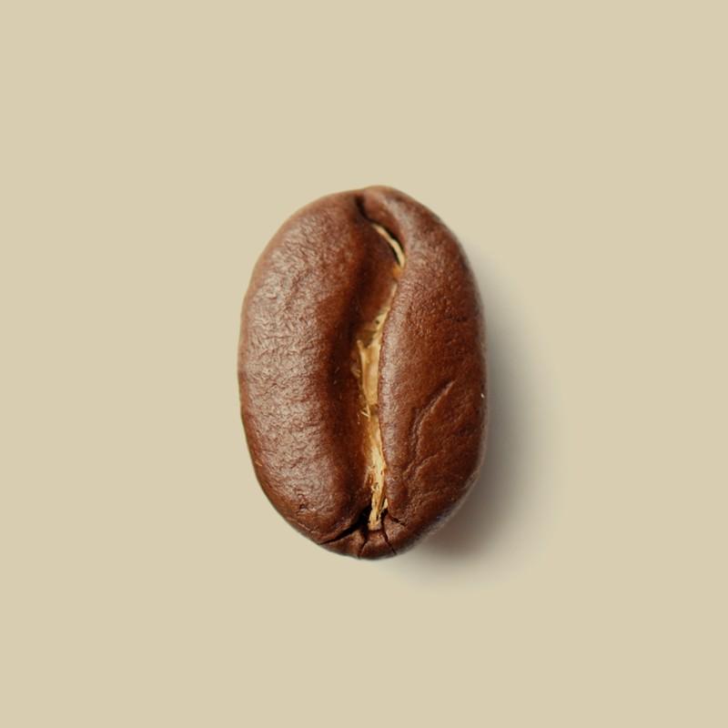 Café en grain Guatemala