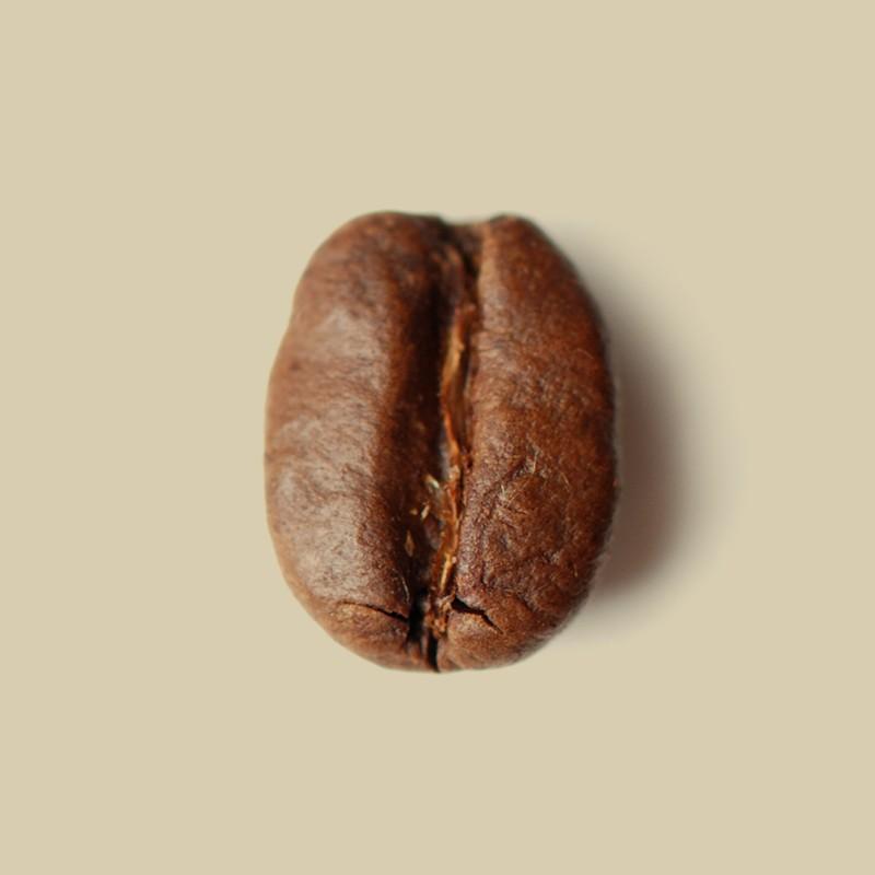 Café en grain Éthiopie Djimmah